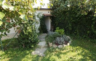 IMG_2883.JPG: giardino