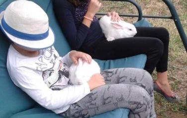 bimbe-e-coniglietti.jpg: bimbe e coniglietti